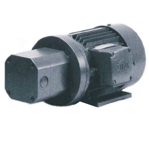 Gear pump with motor horizontal